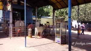 Amaralingeswara-Swamy-temple-amaravati-freshga-12